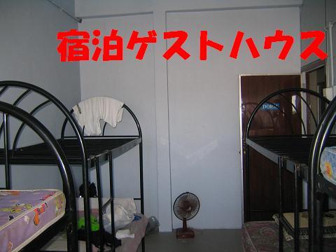 f0161151_2057752.jpg