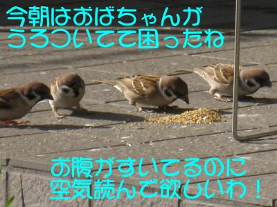 b0158061_20284861.jpg