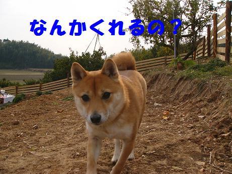 b0150665_1840363.jpg