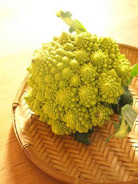 ブイヤベースとたっぷり野菜のホームパーティー☆_d0128268_23565784.jpg