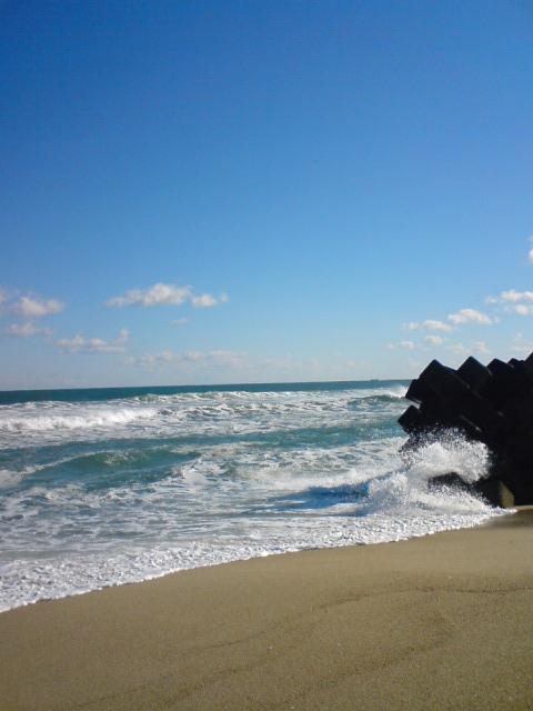 「青と白」・風となつおさん♪_f0096569_12483457.jpg