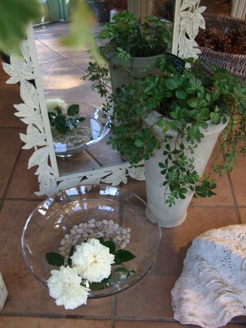 オークリーフ(冬の白い花)_f0049672_1211830.jpg