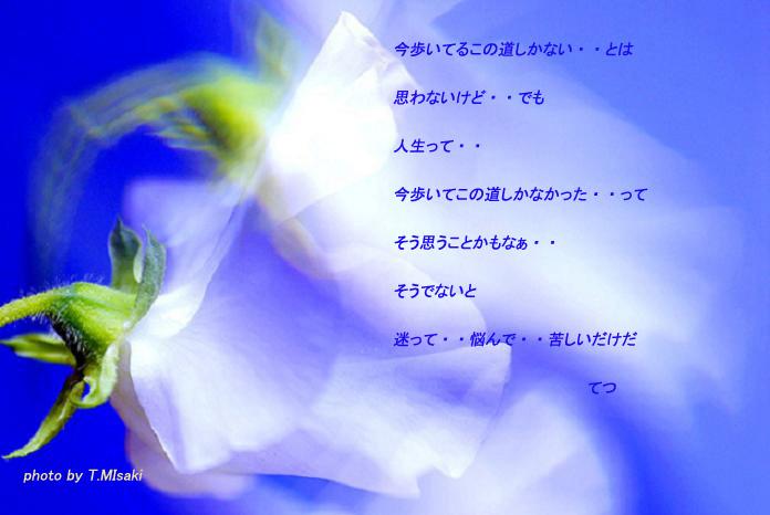 d0032782_0323275.jpg