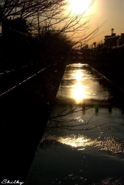 光流れる冬の川面_f0147895_071821.jpg