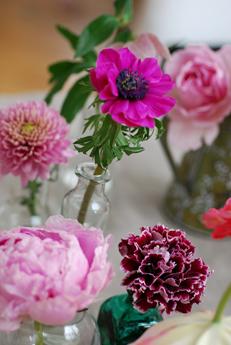 ピンクの花いろいろ・春_f0179528_1455466.jpg