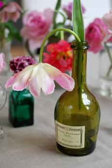 ピンクの花いろいろ・春_f0179528_1474557.jpg