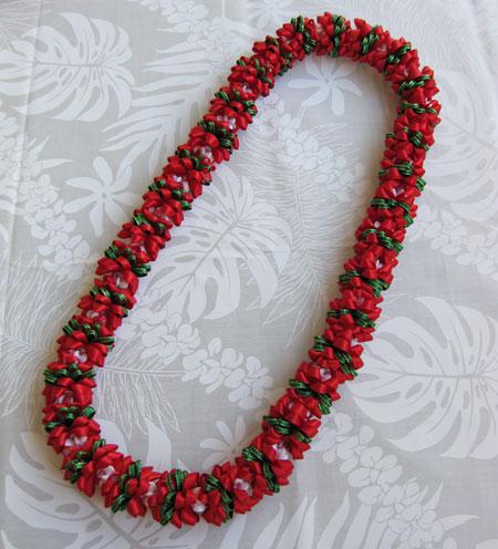 Poinsettia ポインセチア_c0196240_16431299.jpg