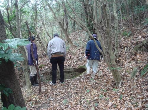 うみべの森の点検・・・定例活動日_c0108460_15161276.jpg