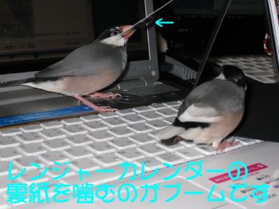b0158061_21125880.jpg