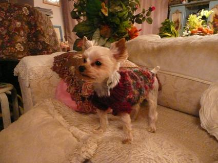 Sweaters for angels - 天使たちのセーター -_f0186787_22473592.jpg