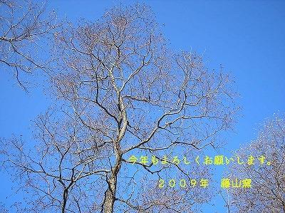 a0111225_18514366.jpg