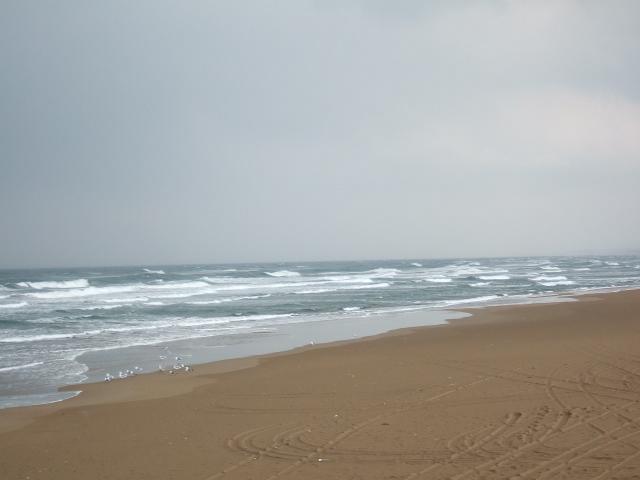 今日の海_c0132732_9582649.jpg