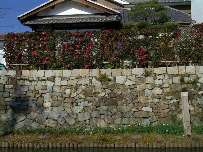 近江八幡_f0095094_018994.jpg