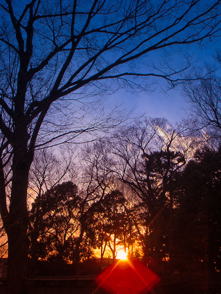 世田谷の夕日は扇形。_f0077521_121487.jpg