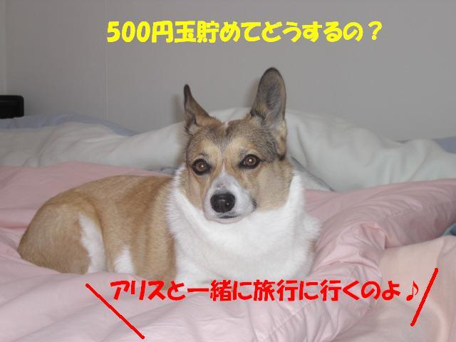 f0182121_23125015.jpg