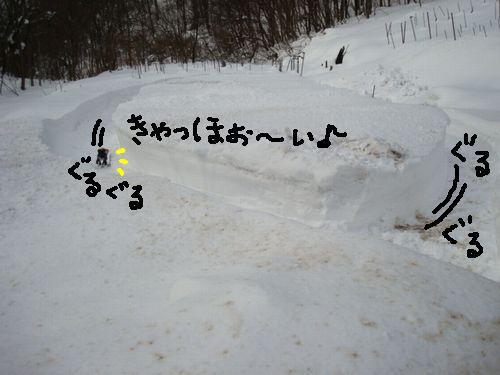 f0141130_13354991.jpg