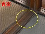 床改修工事_f0031037_19544911.jpg