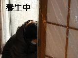 床改修工事_f0031037_19545988.jpg