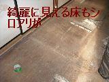 床改修工事_f0031037_1957075.jpg