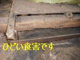 床改修工事_f0031037_1959335.jpg