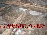 床改修工事_f0031037_19594738.jpg