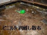 床改修工事_f0031037_20224743.jpg