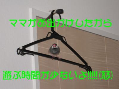 b0158061_2228786.jpg