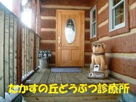 d0140668_1265571.jpg