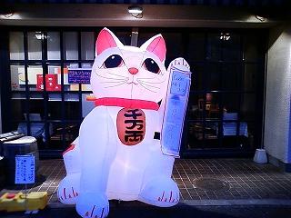 巨大猫_d0074474_15535973.jpg