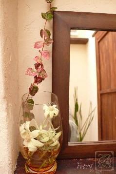 トイレにお花を_b0094378_16544518.jpg