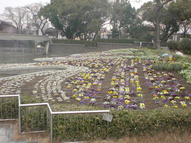 写メblog 11@もりこ_f0174088_1426283.jpg