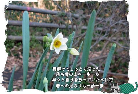 f0137096_1724210.jpg