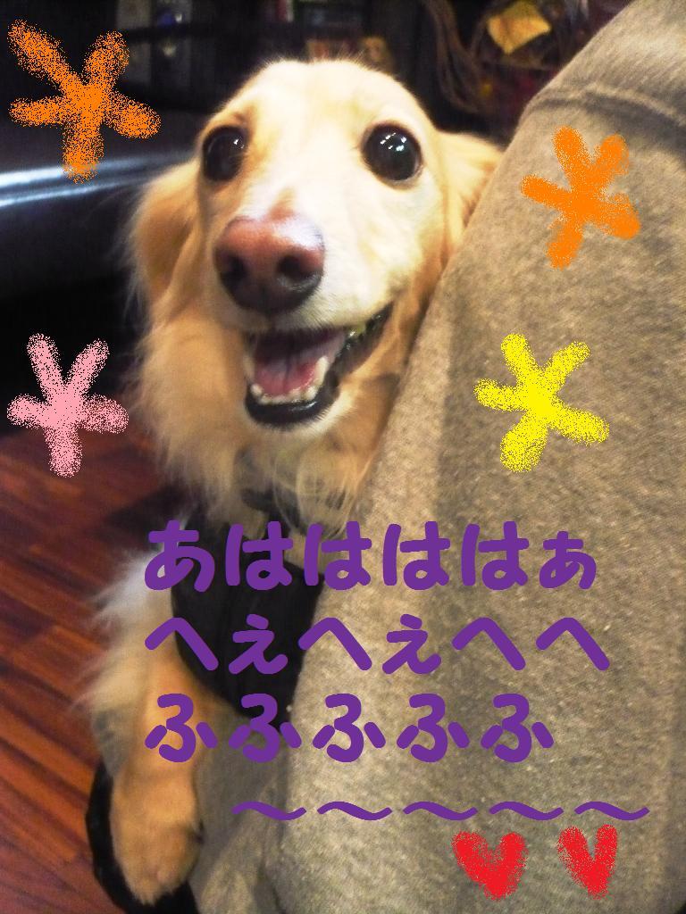 あはははは~~~。。。&犬濯屋レシピ!!_b0130018_131934100.jpg