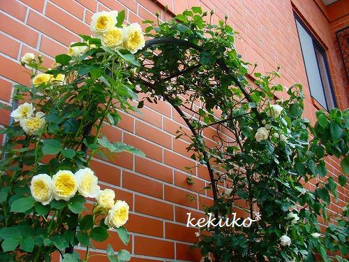 f0170524_12103766.jpg