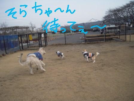 f0176830_1895527.jpg
