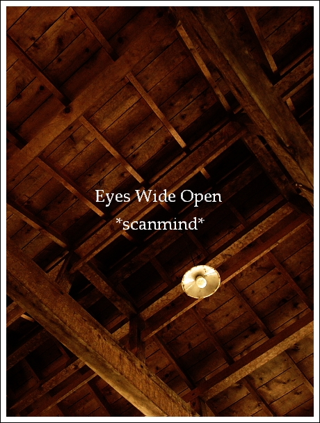 wood_c0170584_22141528.jpg