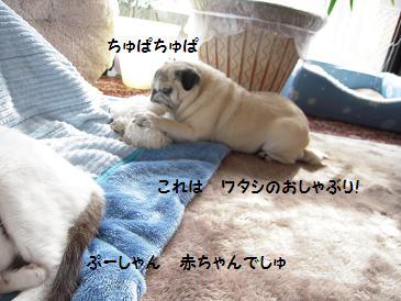 c0139488_015414.jpg
