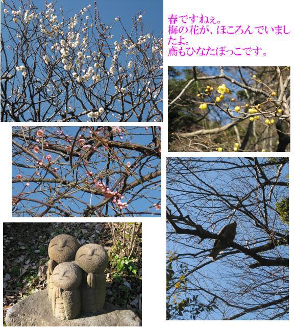 f0110488_1582215.jpg