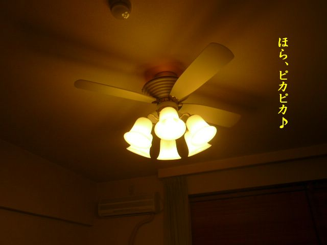 e0094407_2111322.jpg