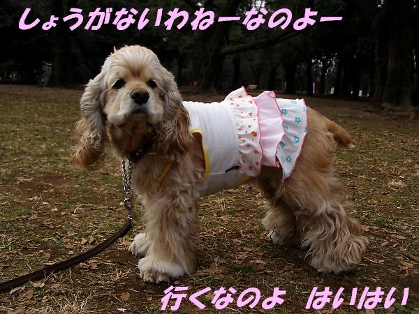 b0067012_1013263.jpg