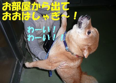 f0121712_003087.jpg
