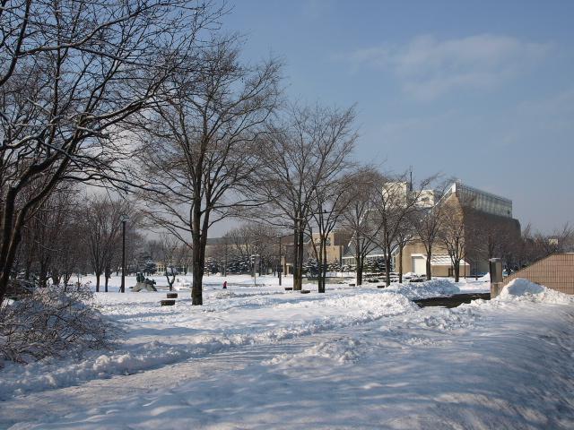 市民文化公園(冬)_d0153062_833202.jpg