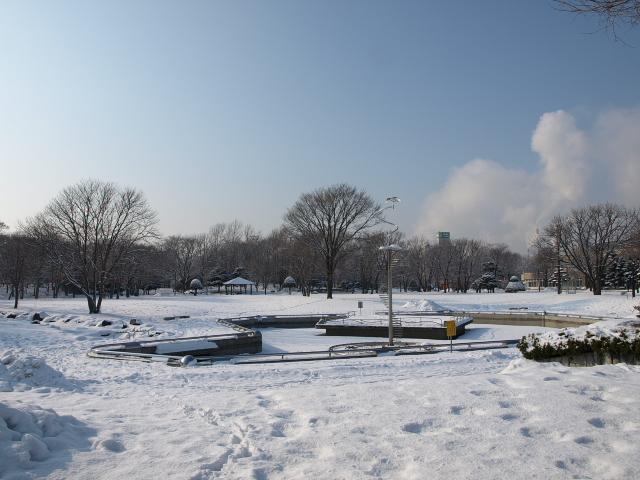 市民文化公園(冬)_d0153062_833578.jpg