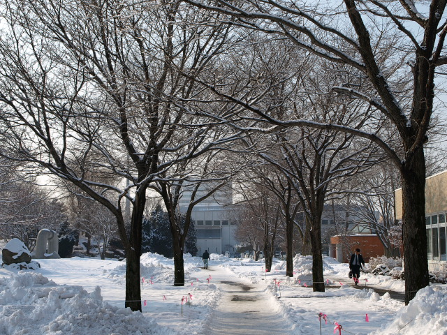 市民文化公園(冬)_d0153062_8342527.jpg