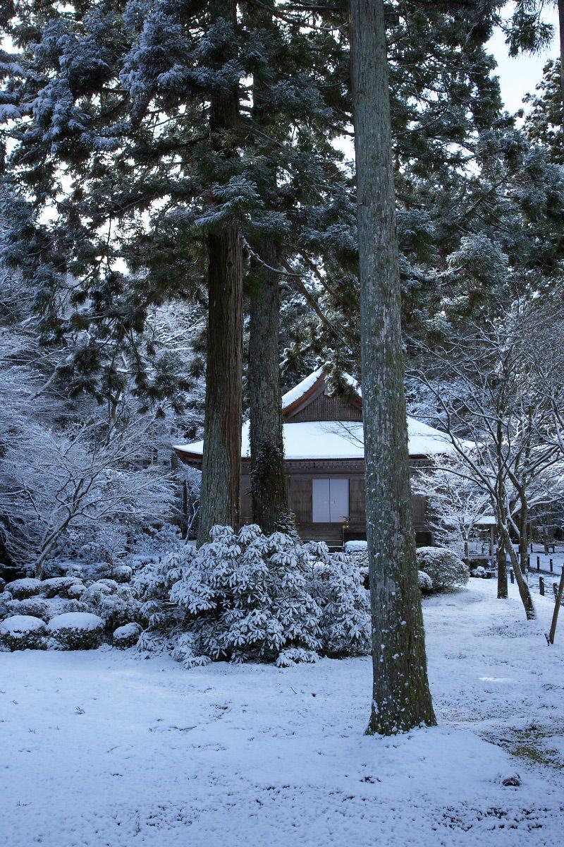 大原 三千院 雪景色 _f0021869_011952.jpg