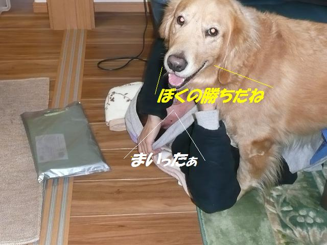 f0114128_1024720.jpg