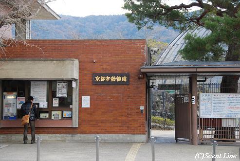 京都 最終日のこと  その2_c0099133_23304266.jpg