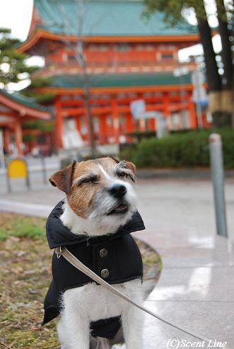 京都 最終日のこと  その2_c0099133_23314031.jpg