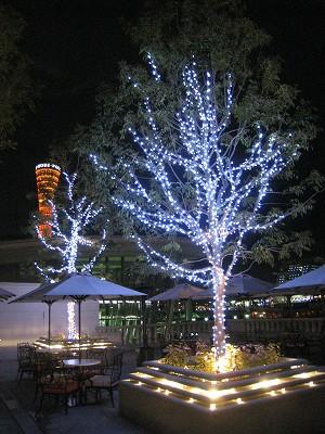 ラ・スイート神戸 夜散歩_a0055835_0255936.jpg