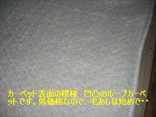 f0031037_18454115.jpg